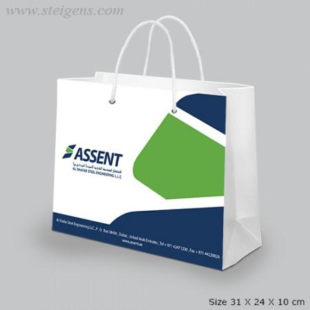 Multi Color Paper Bag SPB 8076