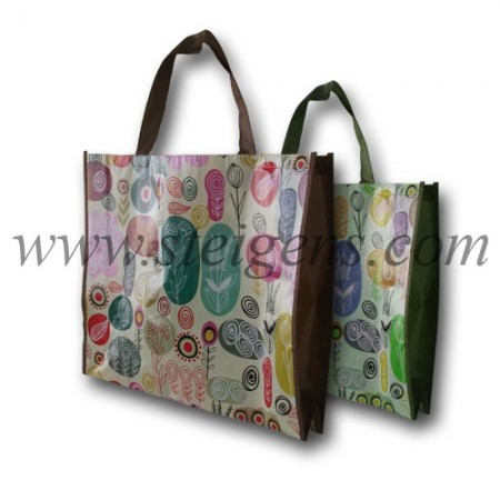 Non Woven Bags with outside Lamination